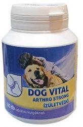 Csomagpontra : Dog Vital Arthro Strong Zöldkagyló ízületerősítő 80db